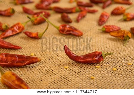 Dried Jalepeno Peppers