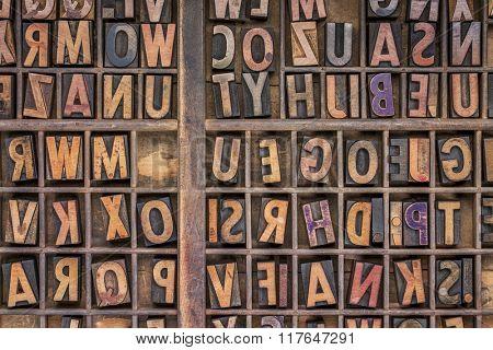 vintage letterpress wood type printing blocks  in a grunge typesetter drawer