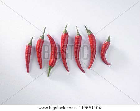 red chili padi in a row