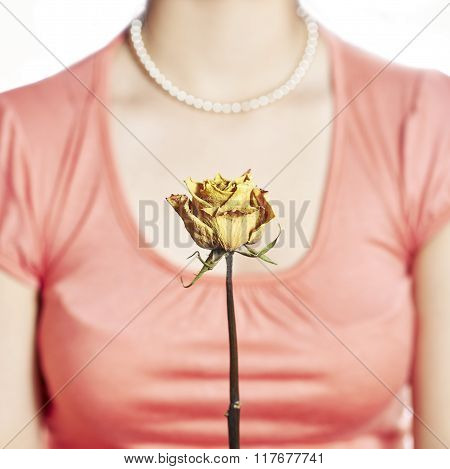 Yellow Rose And Decollete Woman