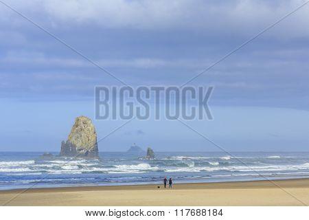 View of the Oregon Coast near Cannon Beach, Oregon, USA