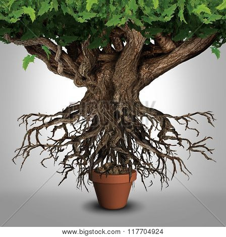 Business expansion and too big to manage business that does not fit metaphor or expanding outgrowing your home concept as a large tree with a small plant pot as an icon for managing growth success poster