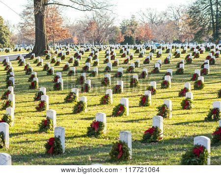 The Arlington Cemetery Decorated