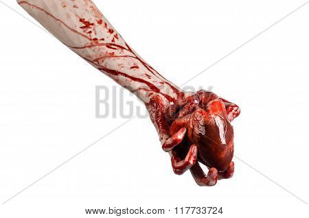 Blood And Halloween Theme: Terrible Bloody Hand Hold Torn Bleeding Human Heart Isolated On White Bac