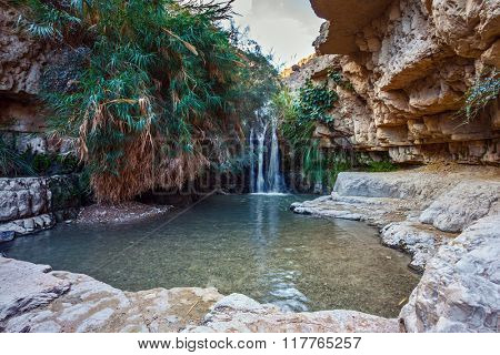 Beautiful waterfall and small scenic pond with clear water. The national park Ein Gedi, Israel