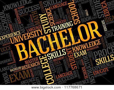 Bachelor Word Cloud