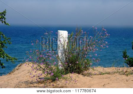Wildflowers grow around rustic wooden post on the shore of Lake Superior. Fog clings to Lake Superior's surface.