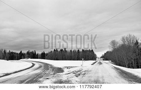 A diverging winter road through forest