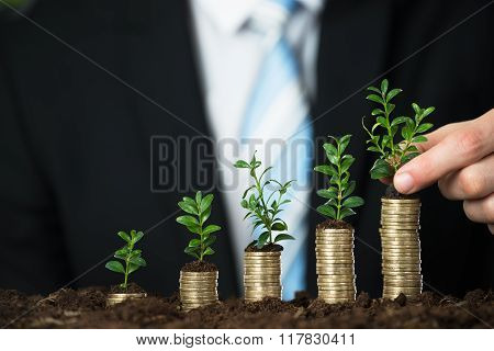 Businessperson Hand Holding Small Plant On Stacked Coins