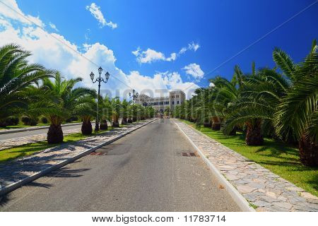 Palm Trees Planted In Row Along Mall Leading To Ancient White Castle On Sunny Day