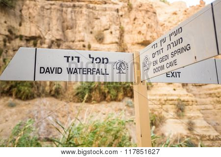 Signl In En Gedi Nature Reserve And National Park