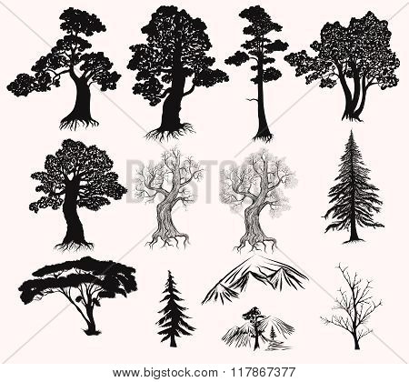 Vector Set Of Hand Drawn Trees Silhouettes For Design