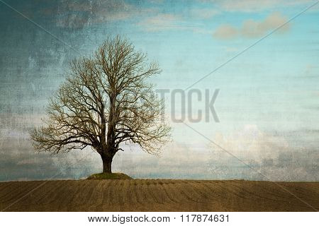 Grunge Lonely Tree In A Field Landcape