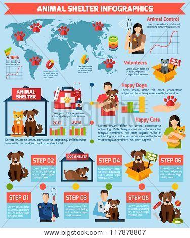 Animal shelter infographics