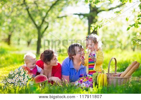 Family with children enjoying picnic in spring garden. Parents and kids having fun eating lunch outdoors in summer park. Mother father son and daughter eat fruit and sandwiches on colorful blanket. poster