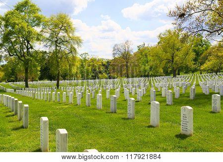 Gravestones at Arlington National Cemetery