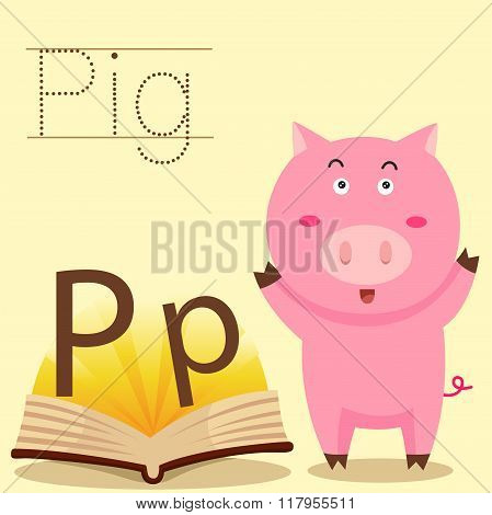 Illustrator of p for pic vocabulary