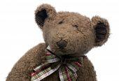 a brown teddy bear poster