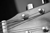 Closeup of the tuning mechanisms of an acoustical steel-stringed guitar. poster