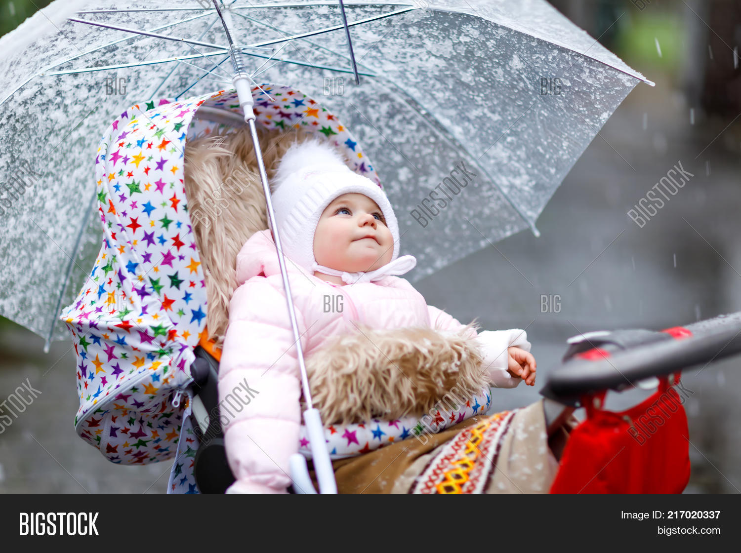b2d5457f8428 Cute Little Beautiful Image   Photo (Free Trial)