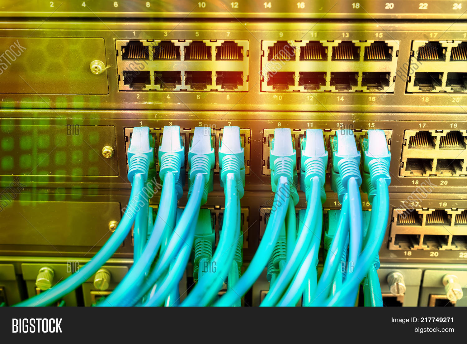 Network Cables Image Photo Free Trial Bigstock Cable Internet Wiring Connected To A Switch And Patch Panelinternet Concept Backgroundsymbol