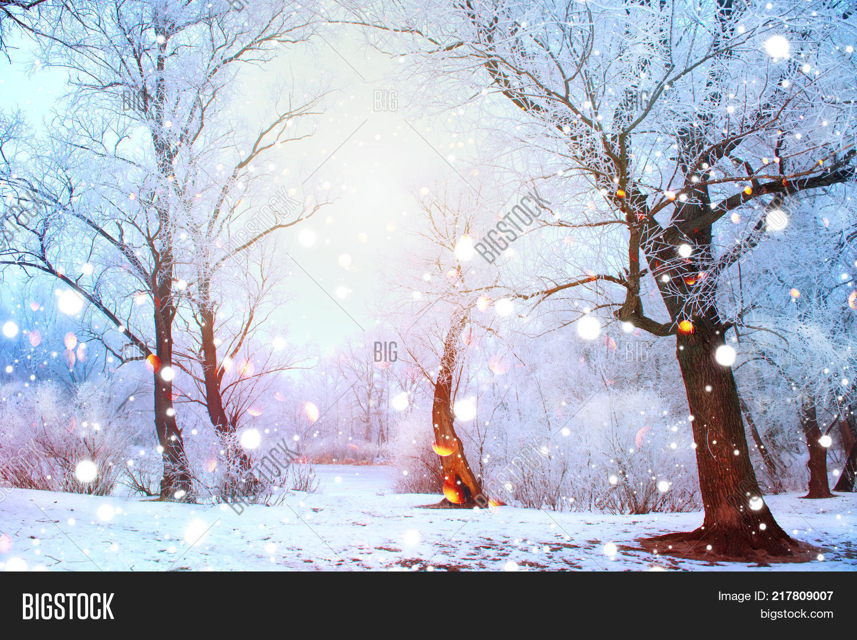 Beautiful Winter Image & Photo (Free Trial)   Bigstock