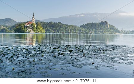 Lake Bled with St. Marys Church of Assumption on small island. Slovenia Europe. Mountains and valley on background. Areal view from above. Staircase stairs lead to church. Frame in form of leaves.