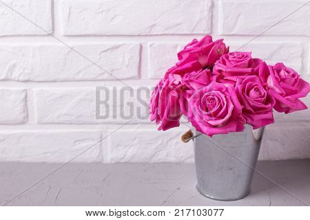 Bright pink roses flowers in bucket on grey background against white wall. Selective focus. Place for text. Floral still life.