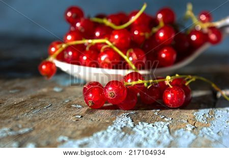 Close up view of white spoon with red currant berry isolated on white background. A white cup with red currant berry and small bunch of red currant with small green leaf of currant bush in front of cup.