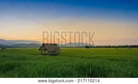 hut in farmland of people in countryside Thailand and twilight sky