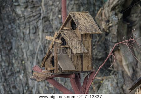 The House Bird. A brown wood tiny house on a tree background.