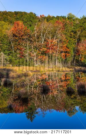 Concept of ecological and automobile tourism. Multicolored foliage of autumn forests is reflected in ponds. The pond is smooth like a mirror. Magnificent resort in French Canada - Mont Tremblant
