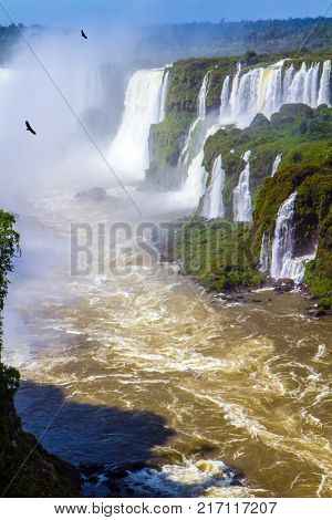 Andean condors fly in the water dust. The most full-flowing waterfalls Iguazu. Border of Argentina, Brazil and Paraguay. Concept of active and extreme tourism