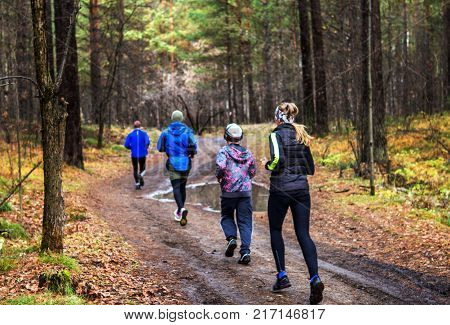 A sports family on a morning run in the forest after the rain. A healthy lifestyle and mass sport.