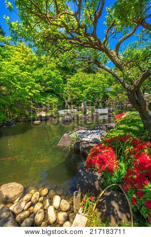 Kamakura, Japan - April 23, 2017: small lake surrounded by a flowering garden in a sunny day at Hase-dera Temple or Hase-kannon, Kanagawa Prefecture, Kamakura. Spring season. Vertical shot.