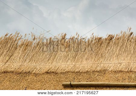 Part of a thatched roof of a house with new straw.Thatched roof top of a home