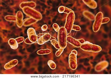 Tannerella forsythia bacteria, 3D illustration. Gram-negative anaerobic bacteria that cause periodontal diseases and have found to be associated with esophageal cancer