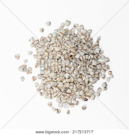 Millet rice millet grains isolated on white background