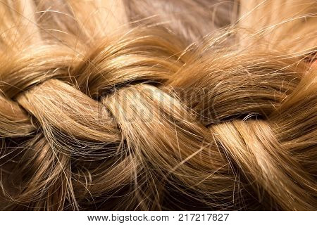 braided pigtails in the beauty salon