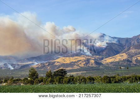 Thomas Fire wildfire burning in hillside of Ventura County California.