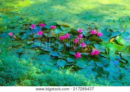 Water colour illustration of Nymphaea nouchali or Nymphaea stellata common name red water lily is a water lily of genus Nymphaea. the national flower of Sri Lanka and Bangladesh.