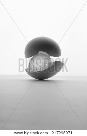 Cracked shell egg and crystal on white bachground Idea concept. The idea ripe . Idea born. black and white photo