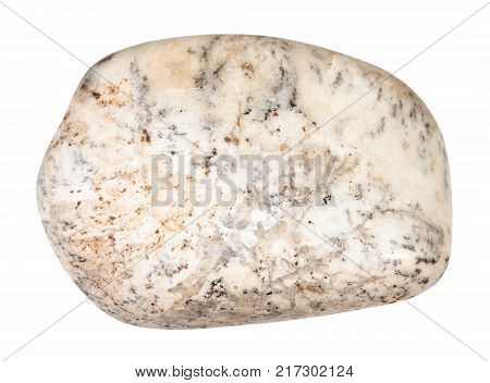 macro shooting of natural mineral rock specimen - raw Paragonite muscovite stone isolated on white background from Borisovskie Hills (Sopki) mine, Ural Mountains, Russia