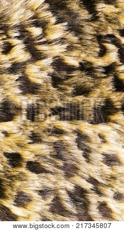 Color texture of faux fur. The background substrate.