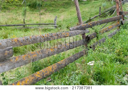 An old wooden fence in a small detached village in Carpathian mountains Ukraine. Everything is covered with fresh green grass. Fences are designed to stop cattle from going everywhere.