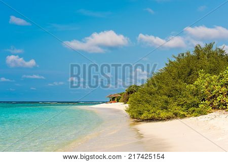 View Of A Tropical Island With Coconut Palms On A Sandy Beach, Maldives, Indian Ocean. Copy Space Fo