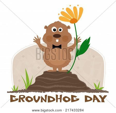 Happy groundhog is standing on a mound next to a flower and a