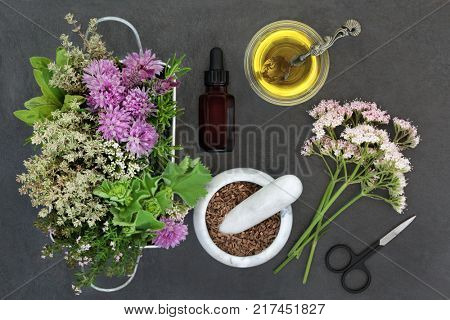 Herbal medicine used in natural alternative remedies with fresh herbs and flowers with valerian, vallium substitute, in a marble mortar with pestle, aromatherapy essential oil bottle and scissors.