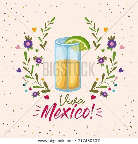 viva mexico colorful poster with tequila glass with lemon slice vector illustration