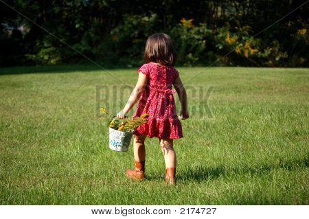 Picking Flowers